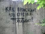 URL изображения: http://devphoto.ru/galle/0019_amos/low/img_7908.png